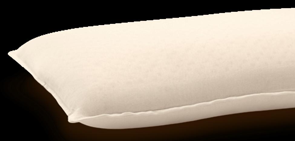 Life Companion Pillow