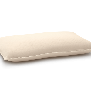 MM Foam Life Companion Pillow
